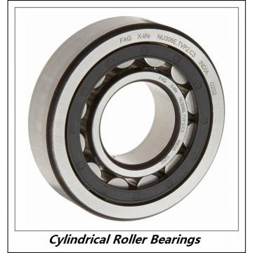 11.024 Inch | 280 Millimeter x 19.685 Inch | 500 Millimeter x 3.15 Inch | 80 Millimeter  CONSOLIDATED BEARING NU-256 M C/3  Cylindrical Roller Bearings