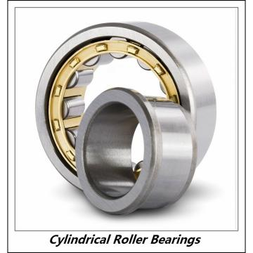 1.969 Inch | 50 Millimeter x 4.331 Inch | 110 Millimeter x 1.063 Inch | 27 Millimeter  CONSOLIDATED BEARING NU-310 C/3  Cylindrical Roller Bearings