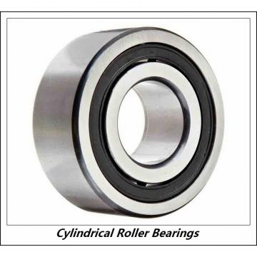 11.024 Inch   280 Millimeter x 19.685 Inch   500 Millimeter x 3.15 Inch   80 Millimeter  CONSOLIDATED BEARING NU-256 M C/3  Cylindrical Roller Bearings