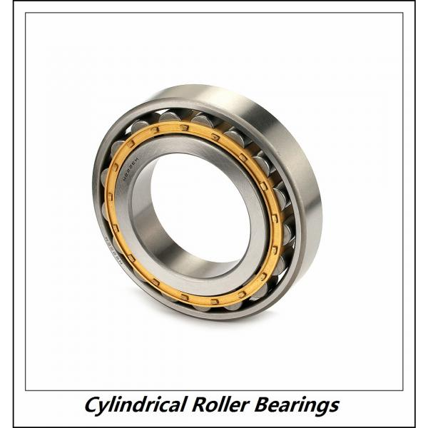 0.669 Inch | 17 Millimeter x 1.85 Inch | 47 Millimeter x 0.551 Inch | 14 Millimeter  CONSOLIDATED BEARING NU-303E M C/3  Cylindrical Roller Bearings #3 image