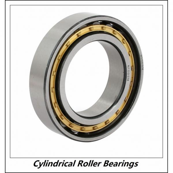 1.772 Inch | 45 Millimeter x 3.937 Inch | 100 Millimeter x 0.984 Inch | 25 Millimeter  CONSOLIDATED BEARING NU-309 P/6  Cylindrical Roller Bearings #2 image
