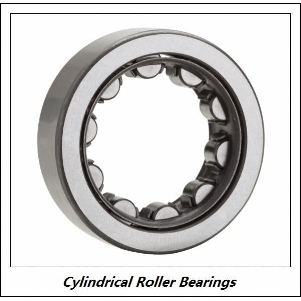 0.984 Inch | 25 Millimeter x 2.047 Inch | 52 Millimeter x 0.591 Inch | 15 Millimeter  CONSOLIDATED BEARING NJ-205E M C/3  Cylindrical Roller Bearings #1 image