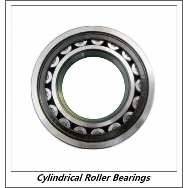 0.984 Inch | 25 Millimeter x 2.047 Inch | 52 Millimeter x 0.591 Inch | 15 Millimeter  CONSOLIDATED BEARING NJ-205E C/4  Cylindrical Roller Bearings #1 image