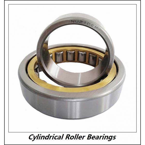 0.984 Inch | 25 Millimeter x 2.047 Inch | 52 Millimeter x 0.591 Inch | 15 Millimeter  CONSOLIDATED BEARING NJ-205E C/4  Cylindrical Roller Bearings #4 image