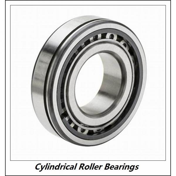 1.772 Inch | 45 Millimeter x 3.937 Inch | 100 Millimeter x 0.984 Inch | 25 Millimeter  CONSOLIDATED BEARING NU-309 P/6  Cylindrical Roller Bearings #3 image
